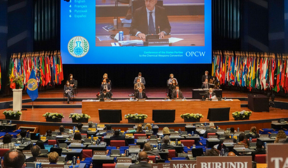 Remarks at the CWCC webinar on 'Reinforcing the Norm Against Chemical Weapons'