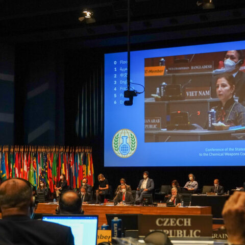 Sanctioning Syria: An Analysis of the OPCW Vote