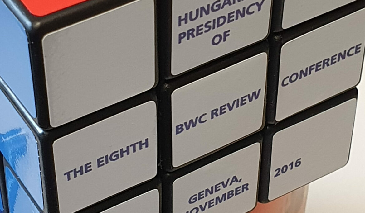Staring at disarmament's Rubik Cube: External consensus-building at the 9th BTWC Review Conference